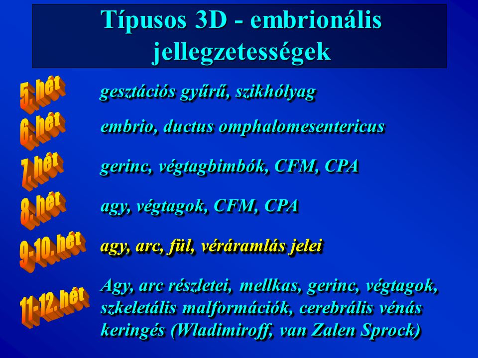 Típusos 3D - embrionális jellegzetességek gesztációs gyűrű, szikhólyag gerinc, végtagbimbók, CFM, CPA agy, végtagok, CFM, CPA agy, arc, fül, véráramlá
