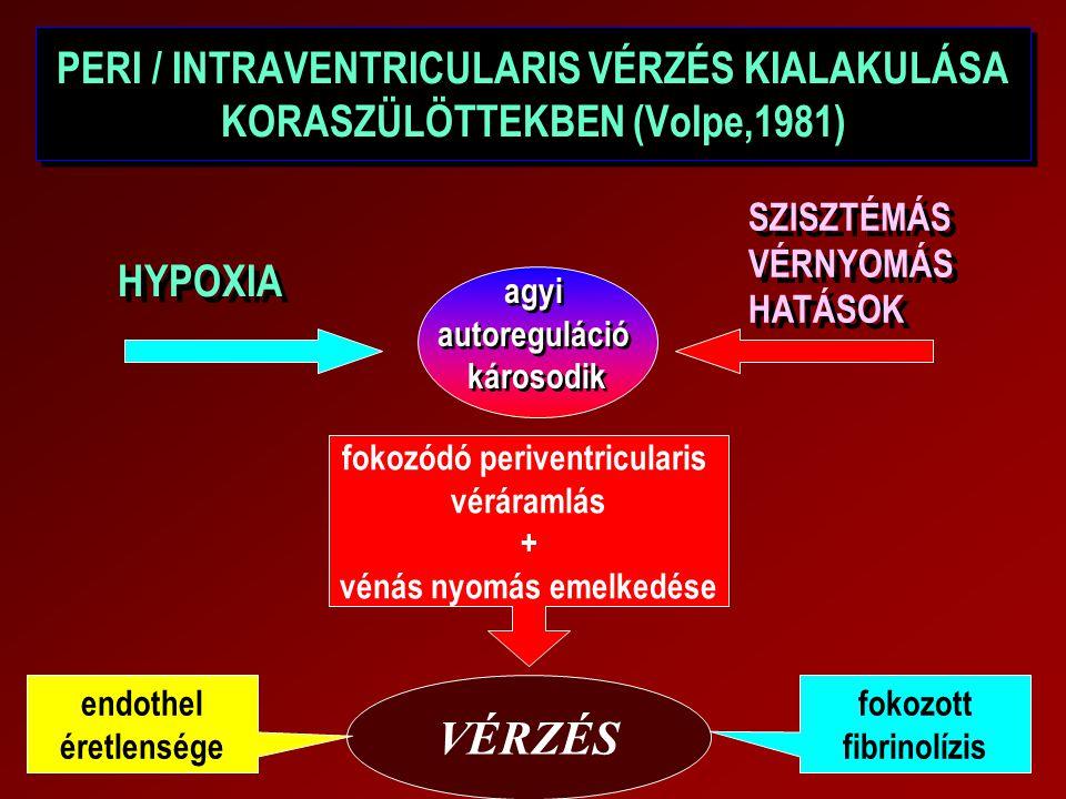 PERI / INTRAVENTRICULARIS VÉRZÉS KIALAKULÁSA KORASZÜLÖTTEKBEN (Volpe,1981) HYPOXIA agyi autoreguláció károsodik SZISZTÉMÁS VÉRNYOMÁS HATÁSOK fokozódó