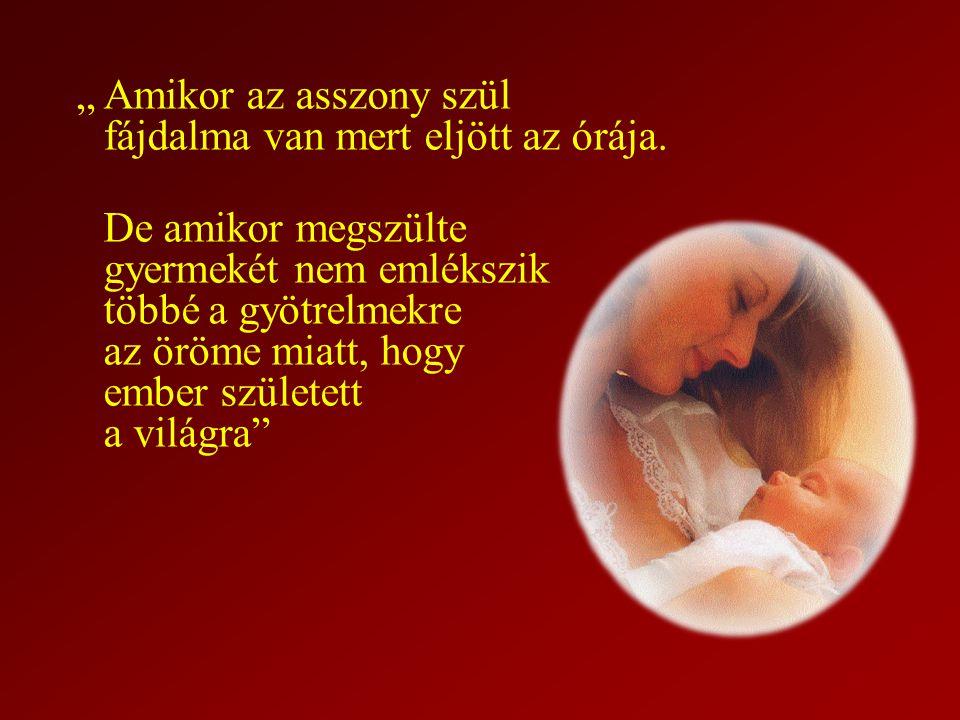 """""""Amikor az asszony szül fájdalma van mert eljött az órája. De amikor megszülte gyermekét nem emlékszik többé a gyötrelmekre az öröme miatt, hogy ember"""