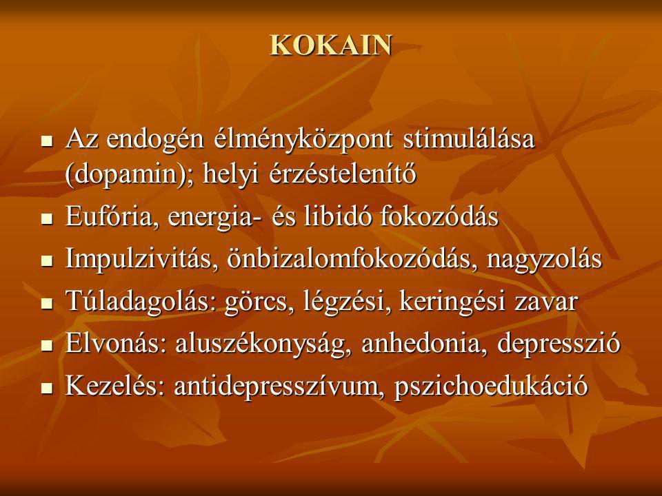 KOKAIN Az endogén élményközpont stimulálása (dopamin); helyi érzéstelenítő Az endogén élményközpont stimulálása (dopamin); helyi érzéstelenítő Eufória