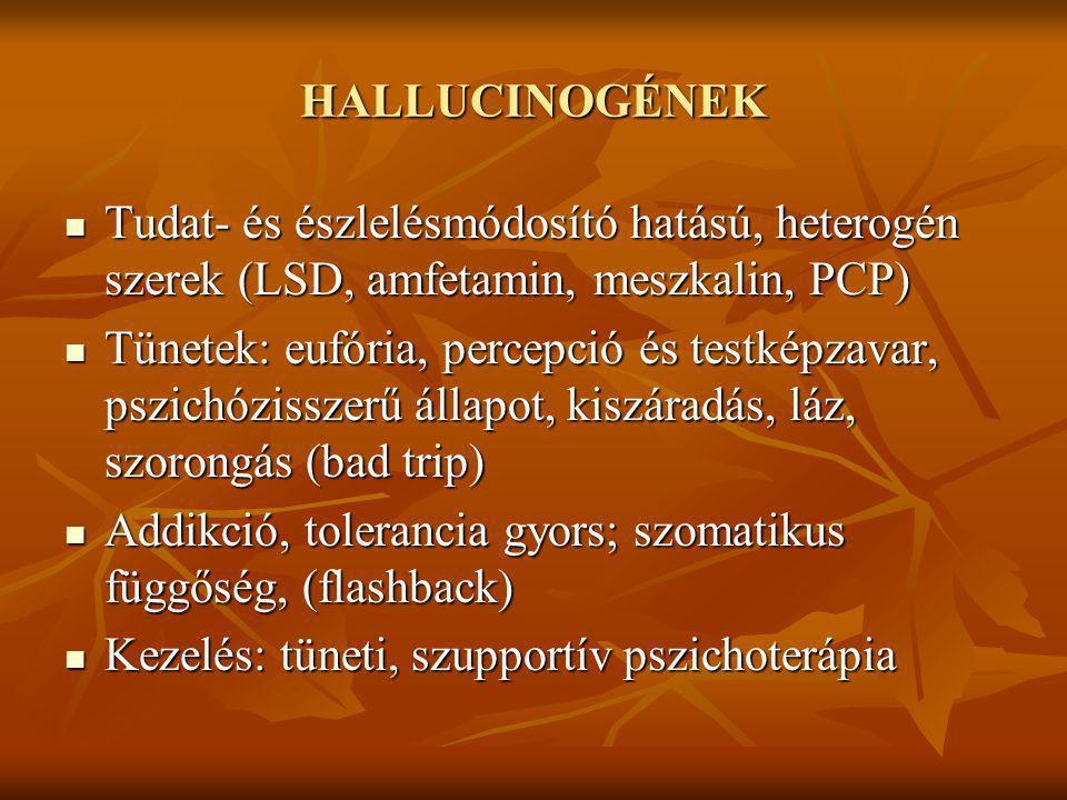 HALLUCINOGÉNEK Tudat- és észlelésmódosító hatású, heterogén szerek (LSD, amfetamin, meszkalin, PCP) Tudat- és észlelésmódosító hatású, heterogén szere