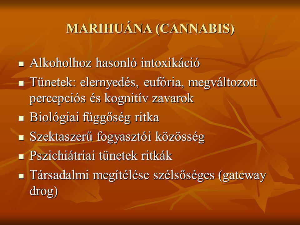 MARIHUÁNA (CANNABIS) Alkoholhoz hasonló intoxikáció Alkoholhoz hasonló intoxikáció Tünetek: elernyedés, eufória, megváltozott percepciós és kognitív z