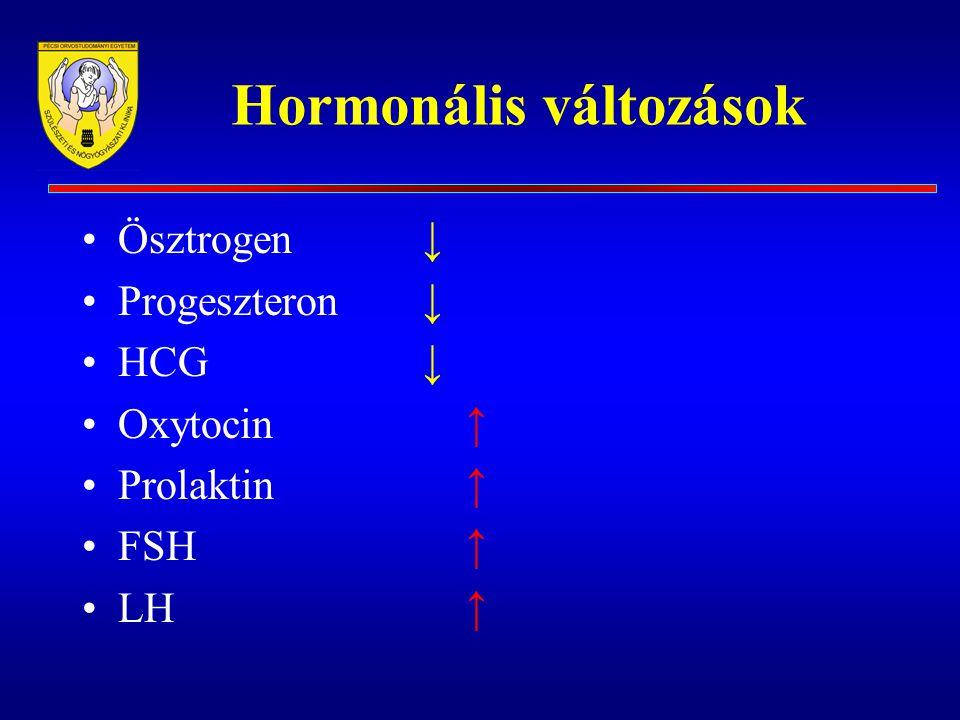 Hormonális változások Ösztrogen ↓ Progeszteron ↓ HCG ↓ Oxytocin ↑ Prolaktin ↑ FSH ↑ LH ↑