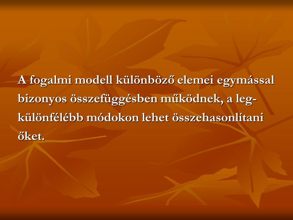 A fogalmi modell különböző elemei egymással bizonyos összefüggésben működnek, a leg- különfélébb módokon lehet összehasonlítani őket.