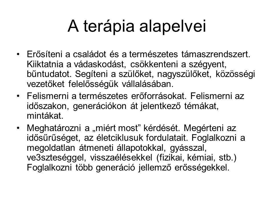 Párkapcsolat-párterápia Augustus Y.Napier: A törékeny kapcsolat Animula Kiadó, Bp.