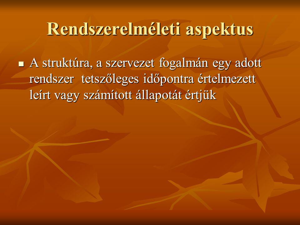 Rendszerelméleti aspektus A struktúra, a szervezet fogalmán egy adott rendszer tetszőleges időpontra értelmezett leírt vagy számított állapotát értjük