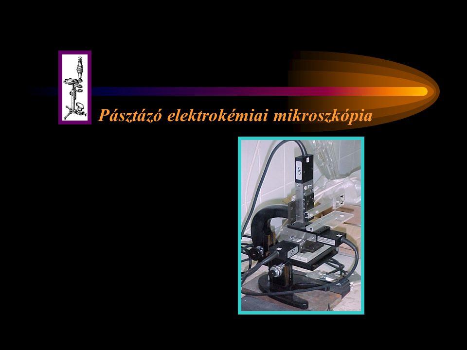 Pásztázó elektrokémiai mikroszkópia