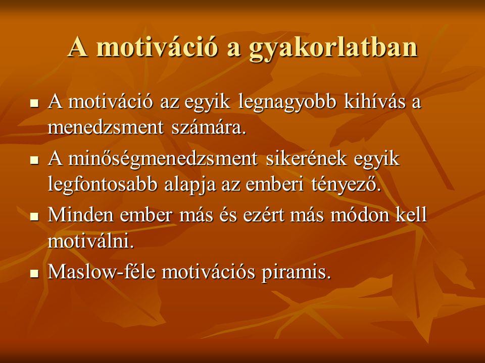 Motiváló tényezők A személyzet motivált, ha: A személyzet motivált, ha: - munkáját sajátjának érzi, - főnöke támogatja, - magas követelményeket állítanak elé, - tudja hogyan működik a könyvtár, - van némi beleszólása a dolgok menetébe, - jó csapatban dolgozik, - innovatív képességeit használhatja.