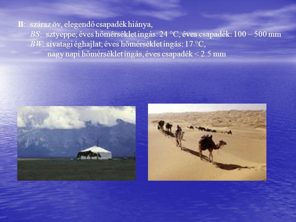 B: száraz öv, elegendő csapadék hiánya, BS: sztyeppe; éves hőmérséklet ingás: 24 °C, éves csapadék: 100 – 500 mm BW: sivatagi éghajlat; éves hőmérséklet ingás: 17 °C, nagy napi hőmérséklet ingás, éves csapadék < 2.5 mm