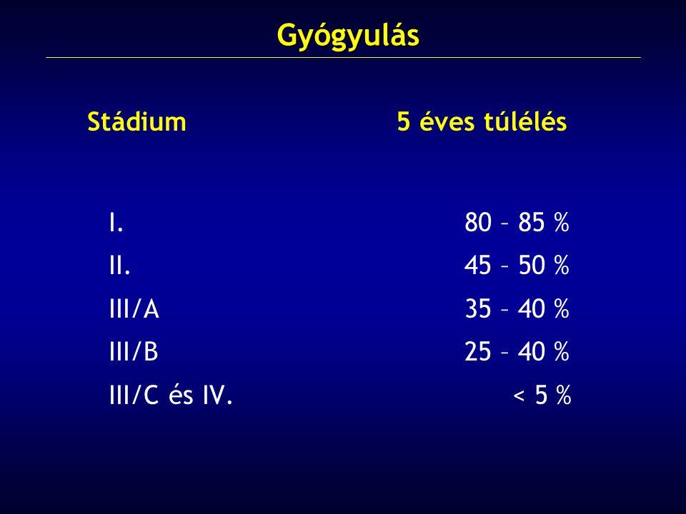 Stádium5 éves túlélés I.80 – 85 % II.45 – 50 % III/A35 – 40 % III/B25 – 40 % III/C és IV.
