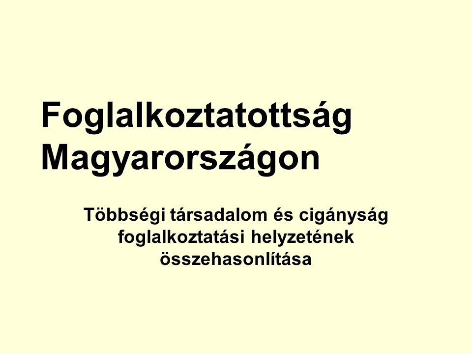 Foglalkoztatottság Magyarországon Többségi társadalom és cigányság foglalkoztatási helyzetének összehasonlítása