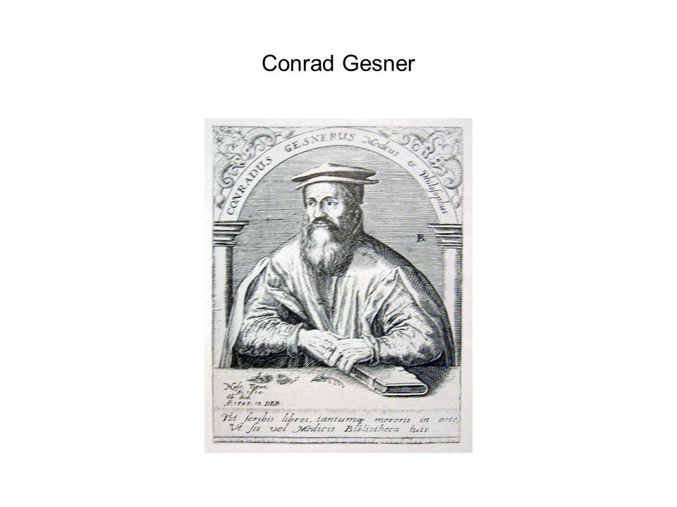 Conrad Gesner