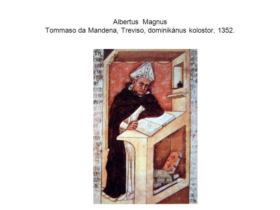 Albertus Magnus Tommaso da Mandena, Treviso, dominikánus kolostor, 1352.
