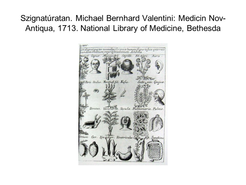 Szignatúratan. Michael Bernhard Valentini: Medicin Nov- Antiqua, 1713. National Library of Medicine, Bethesda