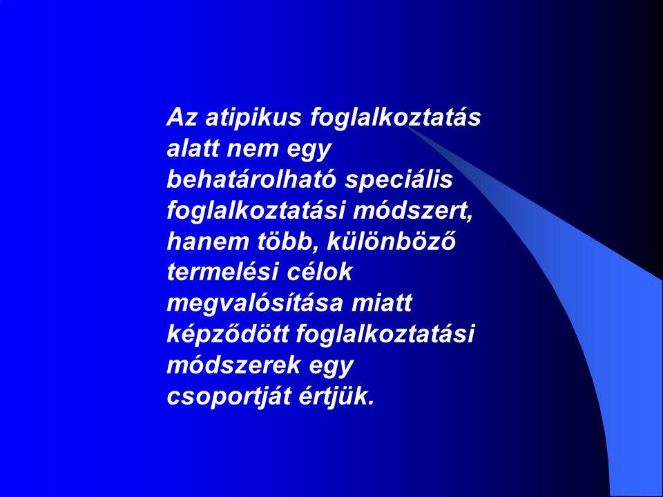 Az atipikus foglalkoztatás alatt nem egy behatárolható speciális foglalkoztatási módszert, hanem több, különböző termelési célok megvalósítása miatt k