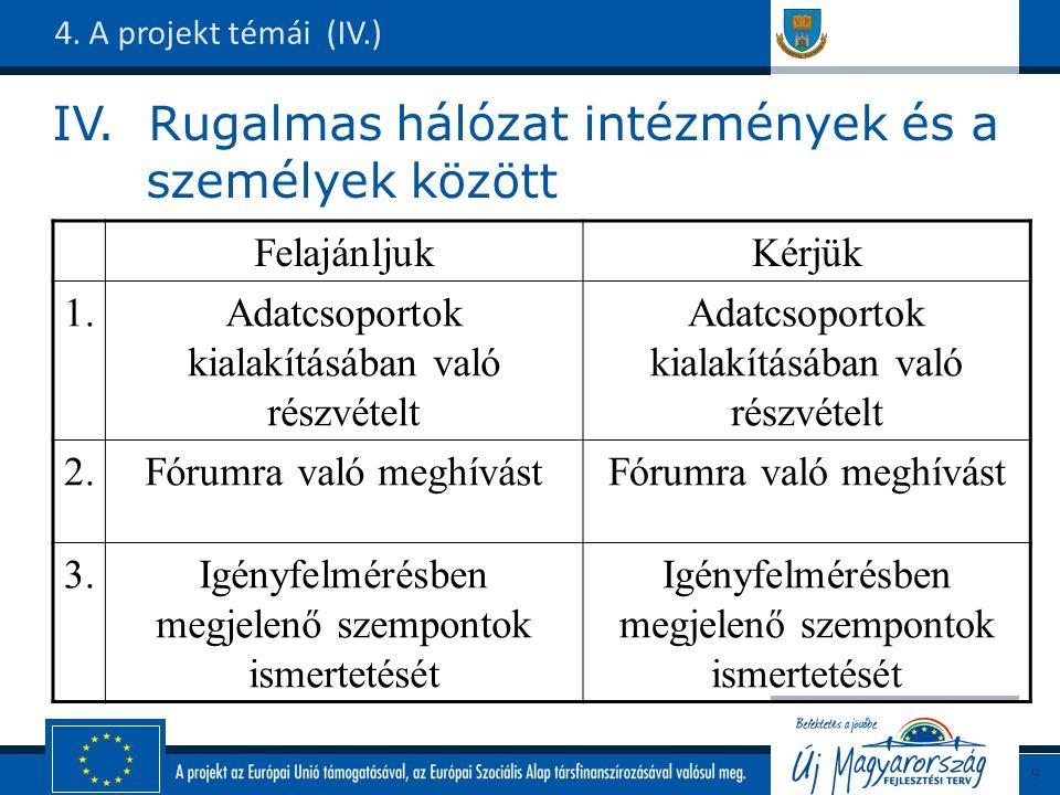 IV. Rugalmas hálózat intézmények és a személyek között 4.