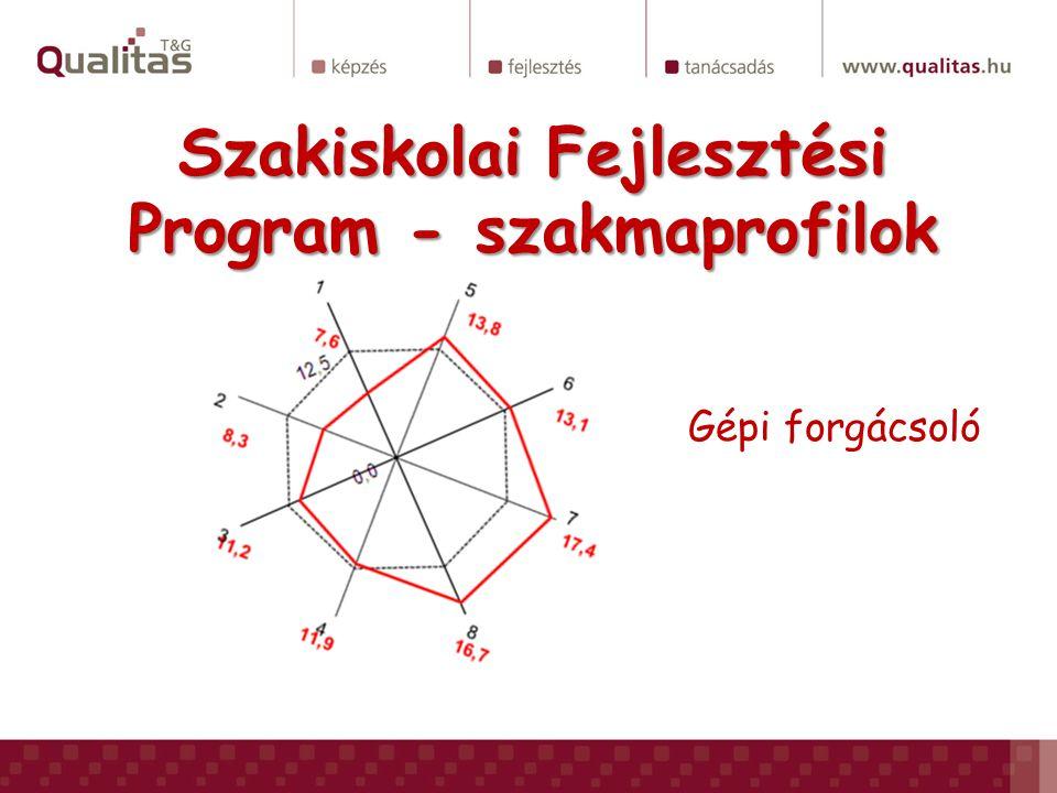 Szakiskolai Fejlesztési Program - szakmaprofilok Gépi forgácsoló