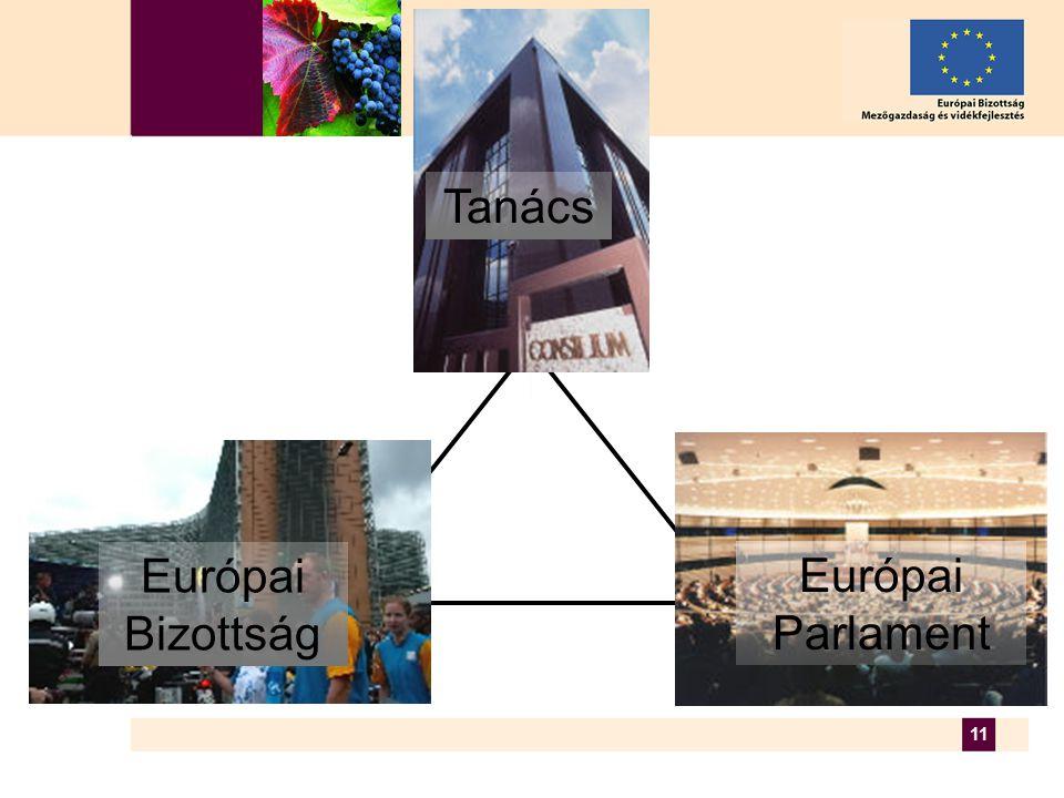 11 Európai Parlament Tanács Európai Bizottság