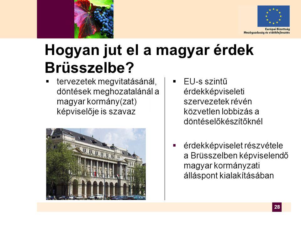 28 Hogyan jut el a magyar érdek Brüsszelbe.