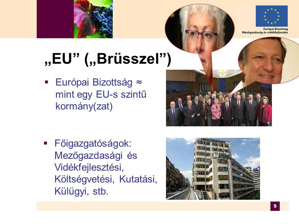 """9 """"EU (""""Brüsszel )  Európai Bizottság ≈ mint egy EU-s szintű kormány(zat)  Főigazgatóságok: Mezőgazdasági és Vidékfejlesztési, Költségvetési, Kutatási, Külügyi, stb."""