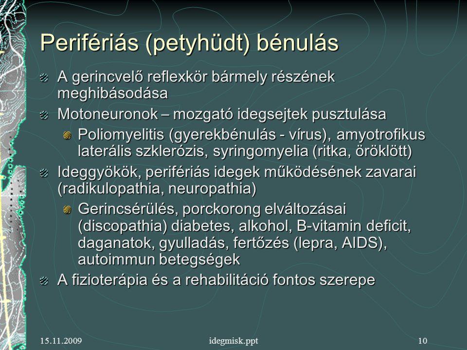 15.11.2009idegmisk.ppt10 Perifériás (petyhüdt) bénulás A gerincvelő reflexkör bármely részének meghibásodása Motoneuronok – mozgató idegsejtek pusztulása Poliomyelitis (gyerekbénulás - vírus), amyotrofikus laterális szklerózis, syringomyelia (ritka, öröklött) Ideggyökök, perifériás idegek működésének zavarai (radikulopathia, neuropathia) Gerincsérülés, porckorong elváltozásai (discopathia) diabetes, alkohol, B-vitamin deficit, daganatok, gyulladás, fertőzés (lepra, AIDS), autoimmun betegségek A fizioterápia és a rehabilitáció fontos szerepe