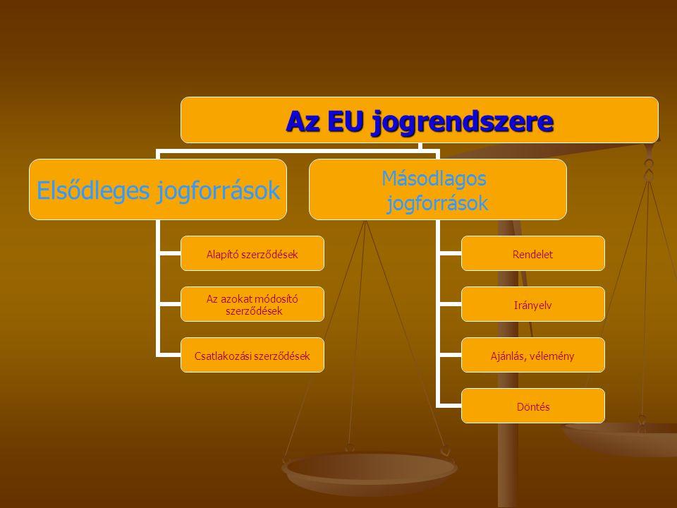 Bevezető gondolatok Hazánk a csatlakozás küszöbén áll Hazánk a csatlakozás küszöbén áll A kistérség fokozott érintettsége A kistérség fokozott érintettsége Munkavállalók érdekeinek védelme Munkavállalók érdekeinek védelme Többé-kevésbé megnyílnak a tagállamok munkaerő-piacai Többé-kevésbé megnyílnak a tagállamok munkaerő-piacai Joggal való élés fontossága Joggal való élés fontossága Munkavállalók elhelyezkedési esélyeinek növelése harmonizált szabályok alkotásával Munkavállalók elhelyezkedési esélyeinek növelése harmonizált szabályok alkotásával
