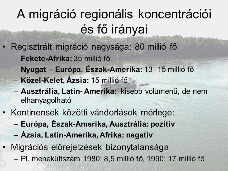 A migráció regionális koncentrációi és fő irányai Regisztrált migráció nagysága: 80 millió fő –Fekete-Afrika: 35 millió fő –Nyugat – Európa, Észak-Ame