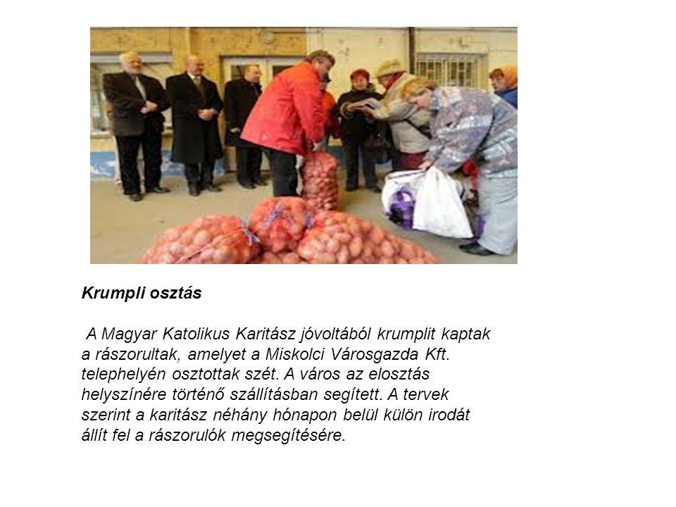 Krumpli osztás A Magyar Katolikus Karitász jóvoltából krumplit kaptak a rászorultak, amelyet a Miskolci Városgazda Kft. telephelyén osztottak szét. A