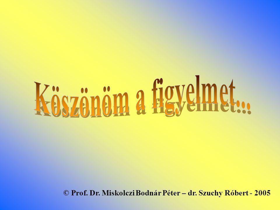 © Prof. Dr. Miskolczi Bodnár Péter – dr. Szuchy Róbert - 2005