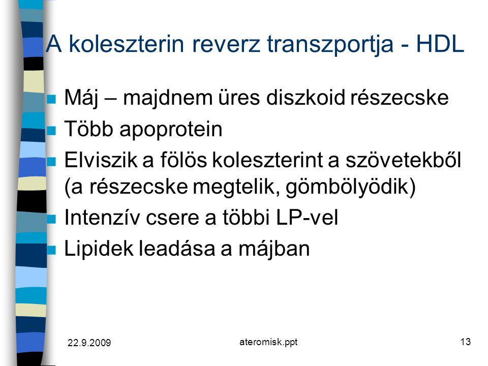 22.9.2009 ateromisk.ppt13 A koleszterin reverz transzportja - HDL n Máj – majdnem üres diszkoid részecske n Több apoprotein n Elviszik a fölös koleszt
