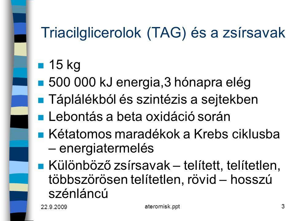 22.9.2009 ateromisk.ppt3 Triacilglicerolok (TAG) és a zsírsavak n 15 kg n 500 000 kJ energia,3 hónapra elég n Táplálékból és szintézis a sejtekben n L
