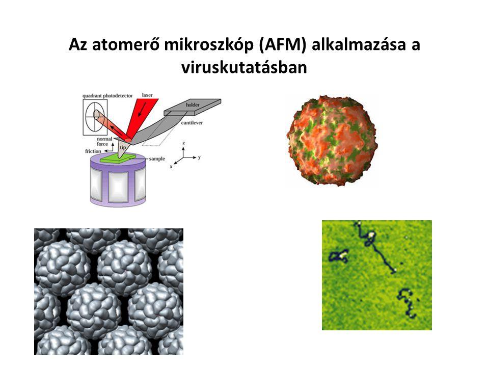 Az atomerő mikroszkóp (AFM) alkalmazása a viruskutatásban Rhynovirus Dohánymozaik virus nucleocapsid fehérjék DNA nucleosomes 25 nm
