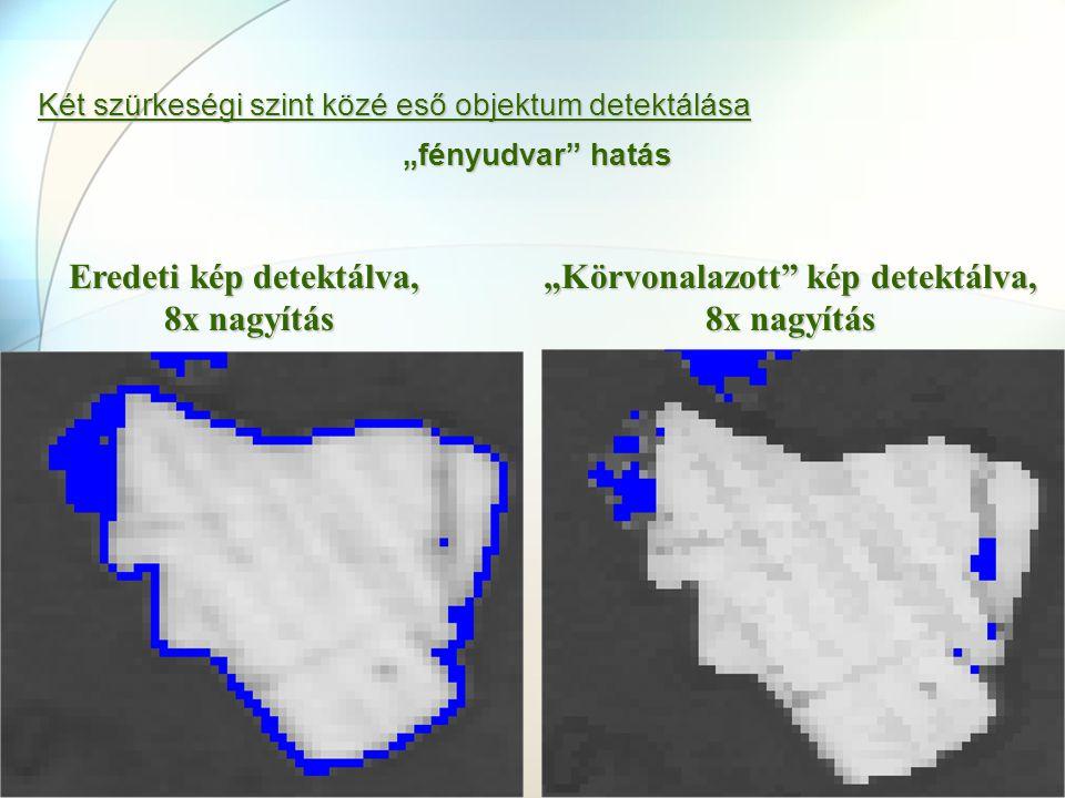 """Két szürkeségi szint közé eső objektum detektálása """"fényudvar"""" hatás Eredeti kép detektálva, 8x nagyítás """"Körvonalazott"""" kép detektálva, 8x nagyítás"""