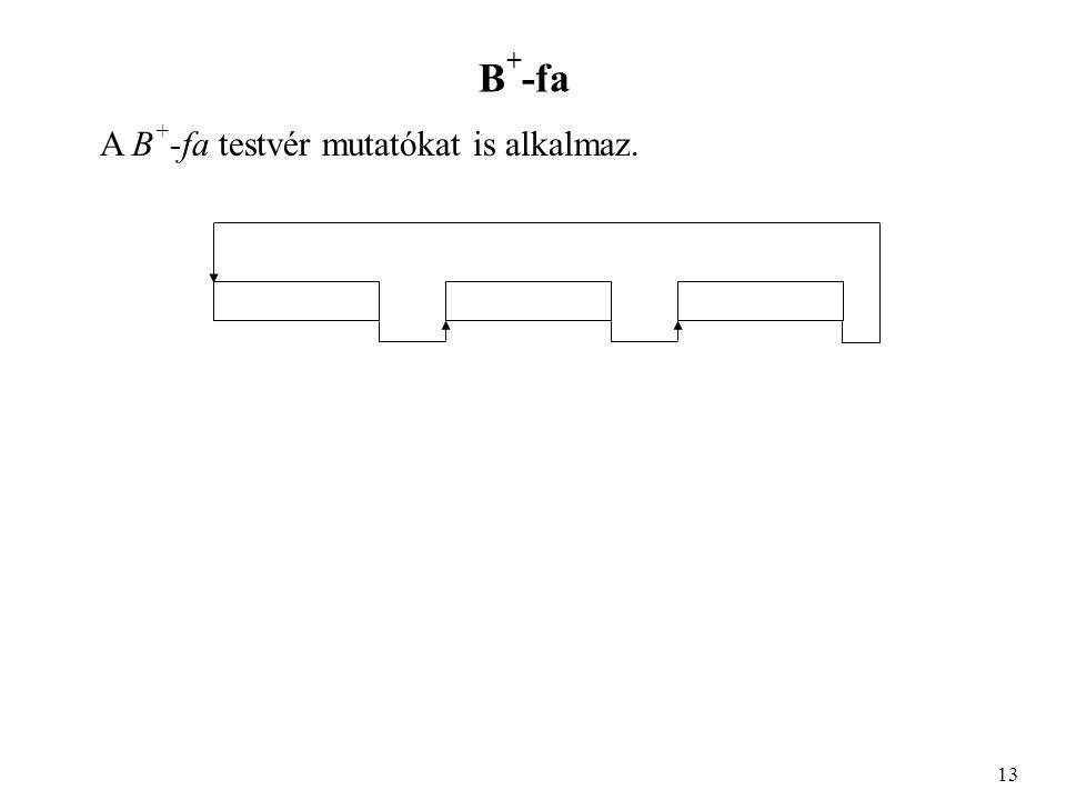 B + -fa A B + -fa testvér mutatókat is alkalmaz. 13