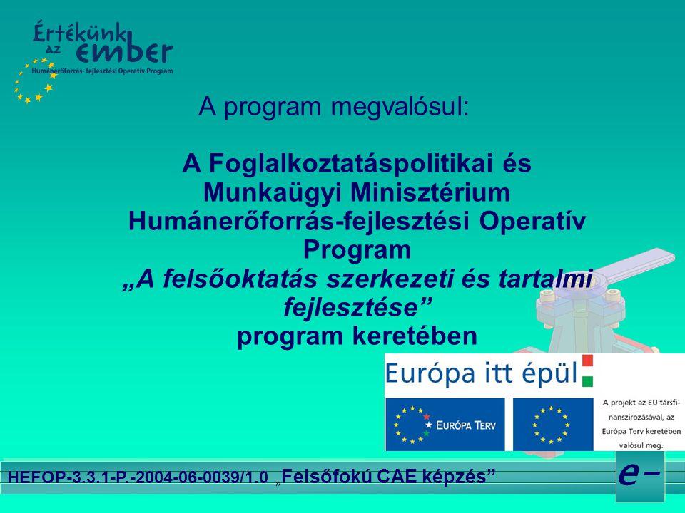 """e- HEFOP-3.3.1-P.-2004-06-0039/1.0 """" Felsőfokú CAE képzés"""" A program megvalósul: A Foglalkoztatáspolitikai és Munkaügyi Minisztérium Humánerőforrás-fe"""