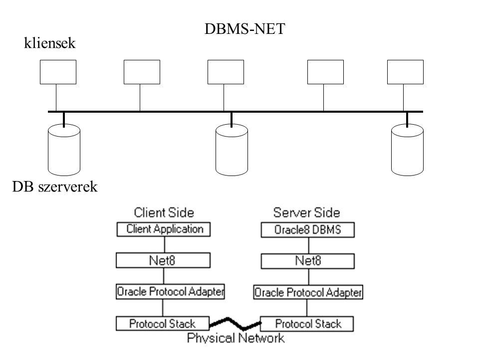 DBMS-NET kliensek DB szerverek