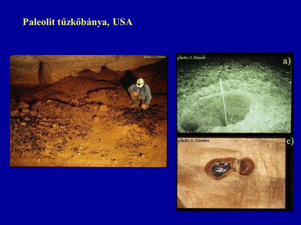 Paleolit tűzkőbánya, USA