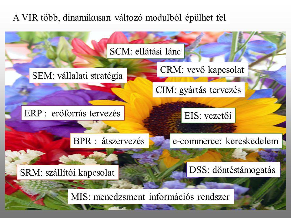 A VIR több, dinamikusan változó modulból épülhet fel ERP : erőforrás tervezés CRM: vevő kapcsolat BPR : átszervezés EIS: vezetői DSS: döntéstámogatás