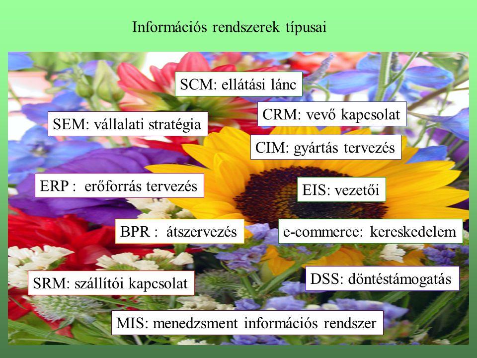 ERP : erőforrás tervezés CRM: vevő kapcsolat BPR : átszervezés EIS: vezetői DSS: döntéstámogatás SEM: vállalati stratégia SRM: szállítói kapcsolat SCM: ellátási lánc e-commerce: kereskedelem MIS: menedzsment információs rendszer CIM: gyártás tervezés Információs rendszerek típusai