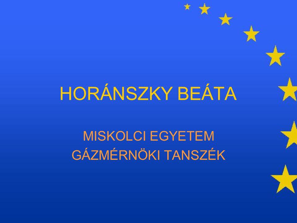 AMSZTERDAMI SZERZŐDÉS 1997, Amszertdam a módosítás célja –előtérbe kerülnek az állampolgári és a munkavállalási jogok –belső piaci korlátok végleges felszámolása –hatáskör-bővítés (nemzetközi és külügyek) –hatékonyságnövelés az intézményi rendszerben új alapelv: nyilvánosság elve