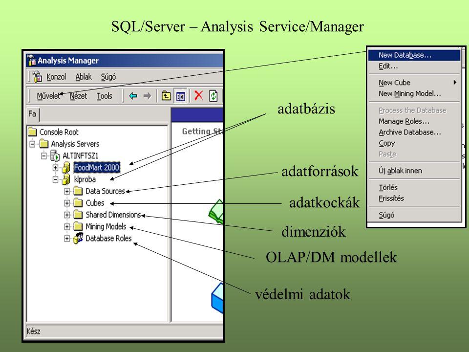 SQL/Server – Analysis Service/Manager adatbázis adatforrások adatkockák dimenziók OLAP/DM modellek védelmi adatok
