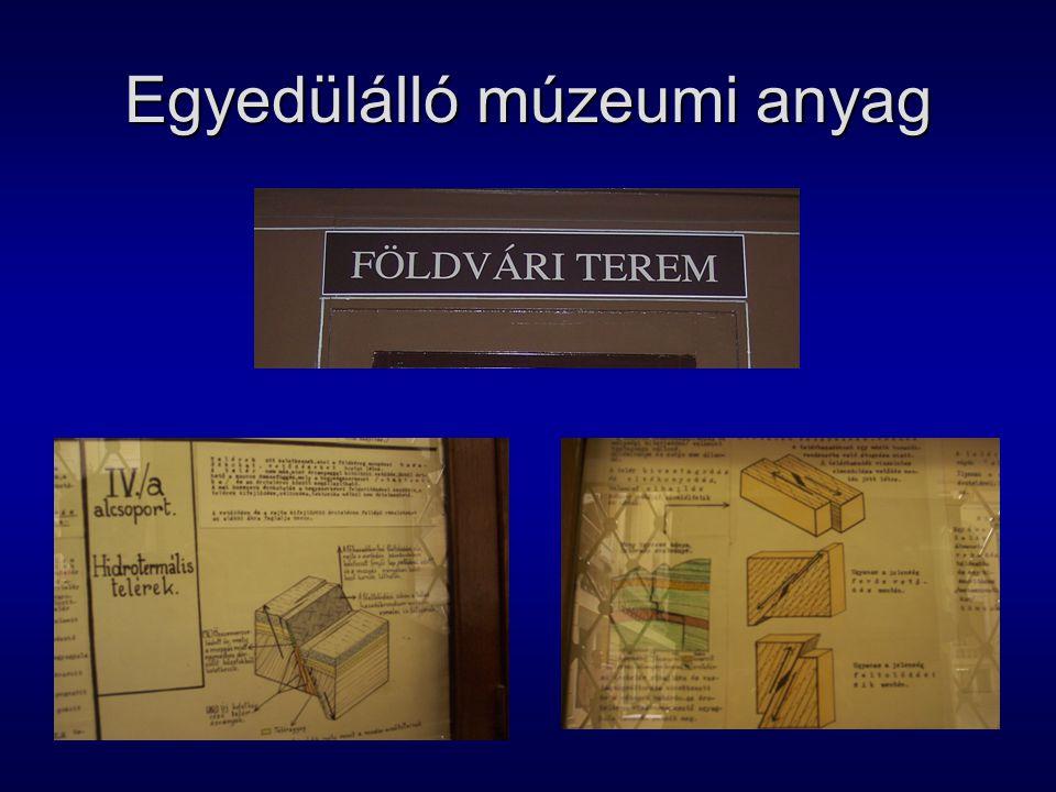 Egyedülálló múzeumi anyag
