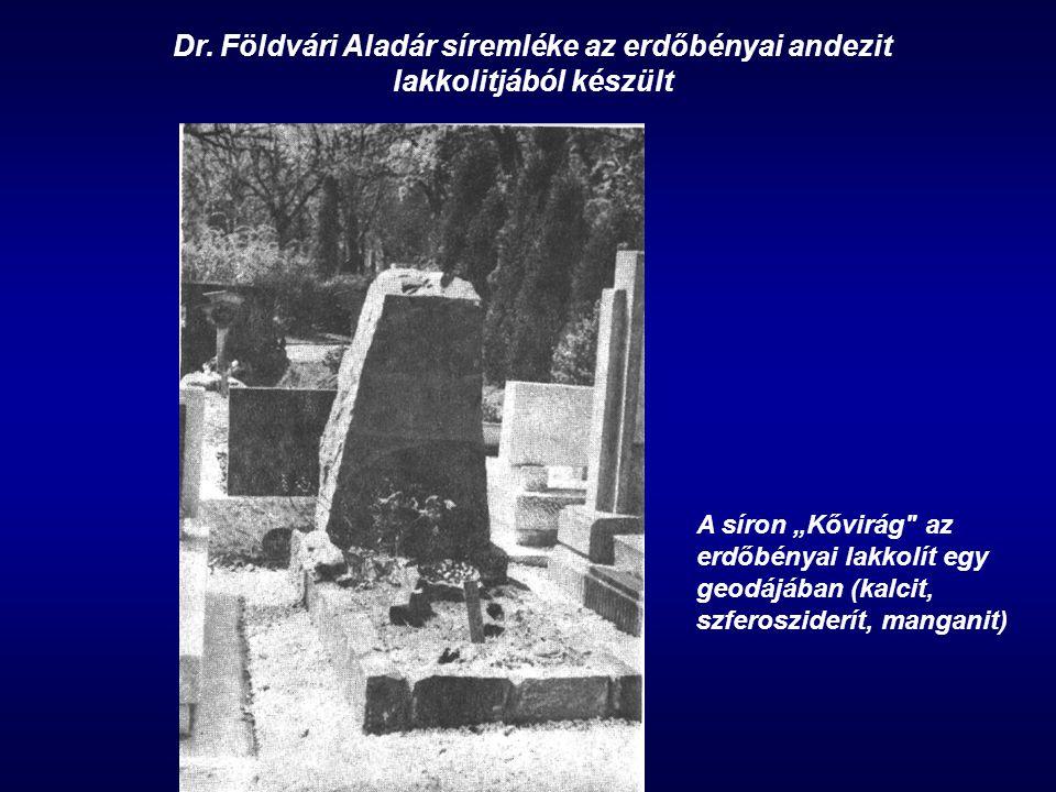"""Dr. Földvári Aladár síremléke az erdőbényai andezit lakkolitjából készült A síron """"Kővirág"""