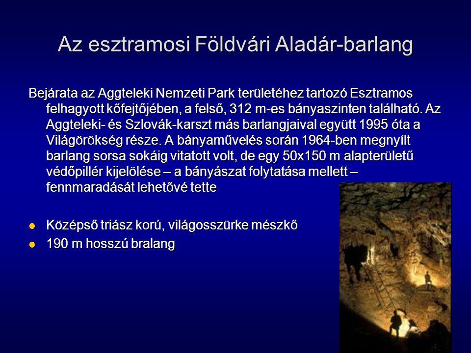 Az esztramosi Földvári Aladár-barlang Bejárata az Aggteleki Nemzeti Park területéhez tartozó Esztramos felhagyott kőfejtőjében, a felső, 312 m-es bány