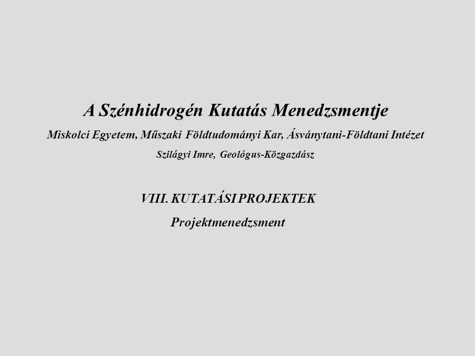 VIII. KUTATÁSI PROJEKTEK Projektmenedzsment A Szénhidrogén Kutatás Menedzsmentje Miskolci Egyetem, Műszaki Földtudományi Kar, Ásványtani-Földtani Inté