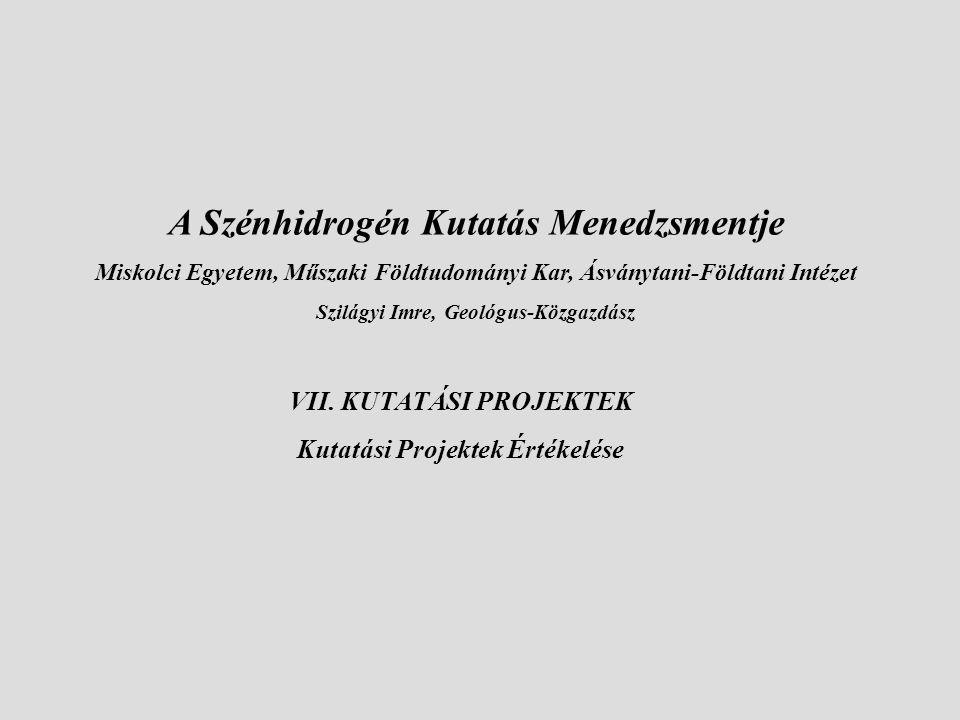 VII. KUTATÁSI PROJEKTEK Kutatási Projektek Értékelése A Szénhidrogén Kutatás Menedzsmentje Miskolci Egyetem, Műszaki Földtudományi Kar, Ásványtani-Föl