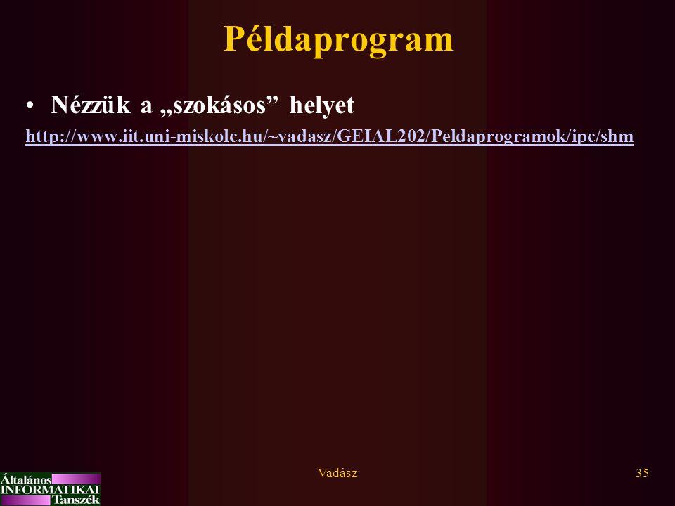 """Vadász35 Példaprogram Nézzük a """"szokásos"""" helyet http://www.iit.uni-miskolc.hu/~vadasz/GEIAL202/Peldaprogramok/ipc/shm"""