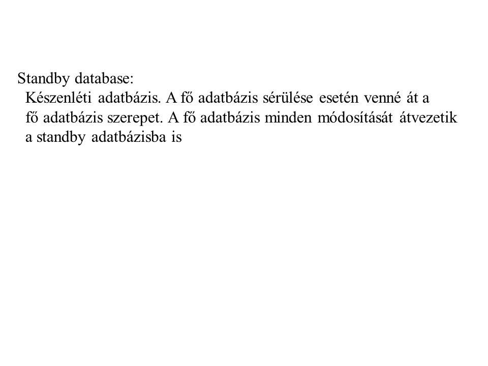 Standby database: Készenléti adatbázis.