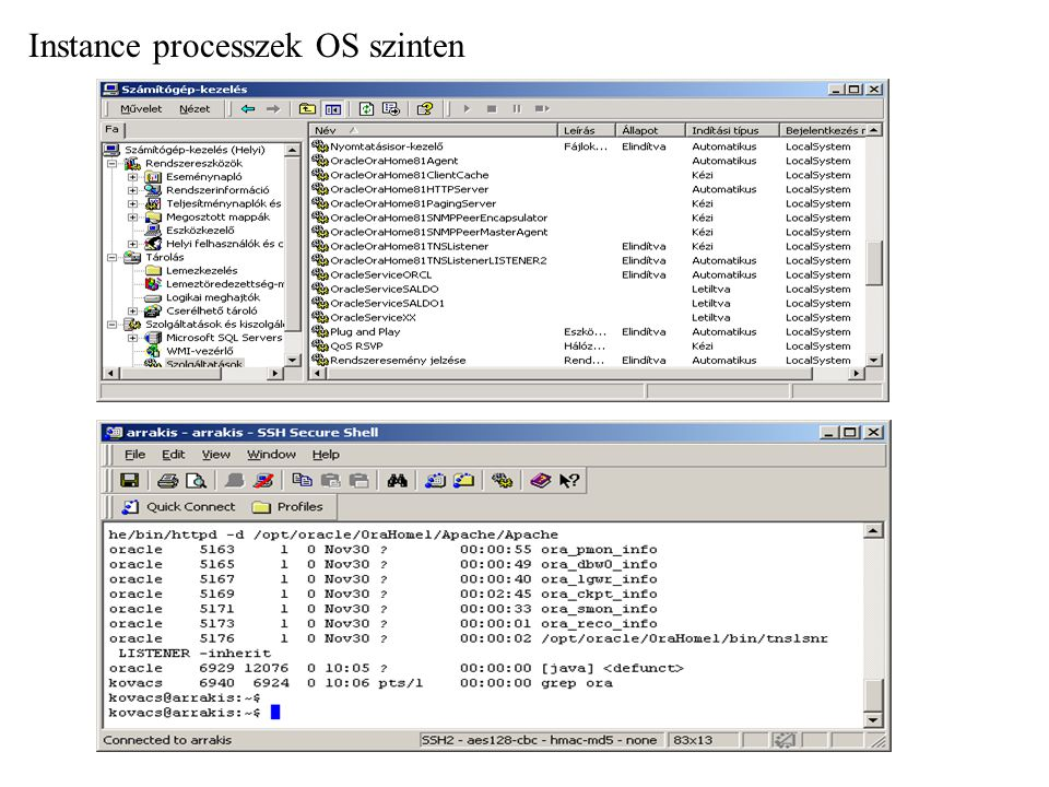 Instance processzek OS szinten