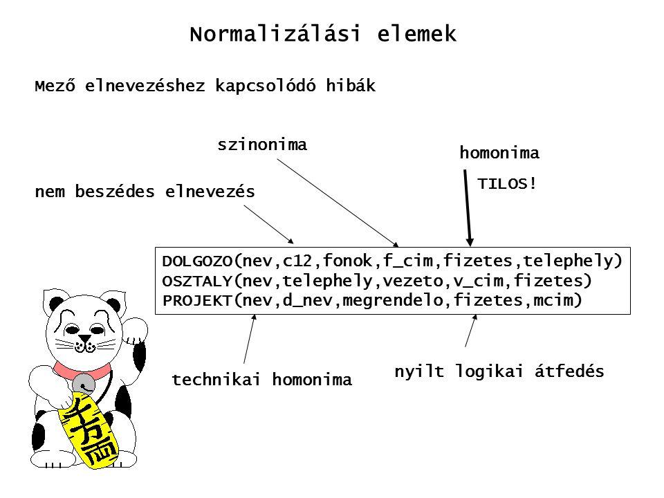 Normalizálási elemek Mező elnevezéshez kapcsolódó hibák DOLGOZO(nev,c12,fonok,f_cim,fizetes,telephely) OSZTALY(nev,telephely,vezeto,v_cim,fizetes) PRO